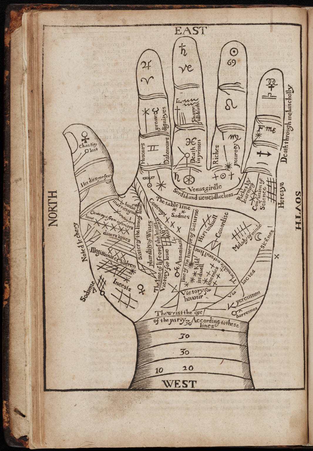 Astrology, Palmistry